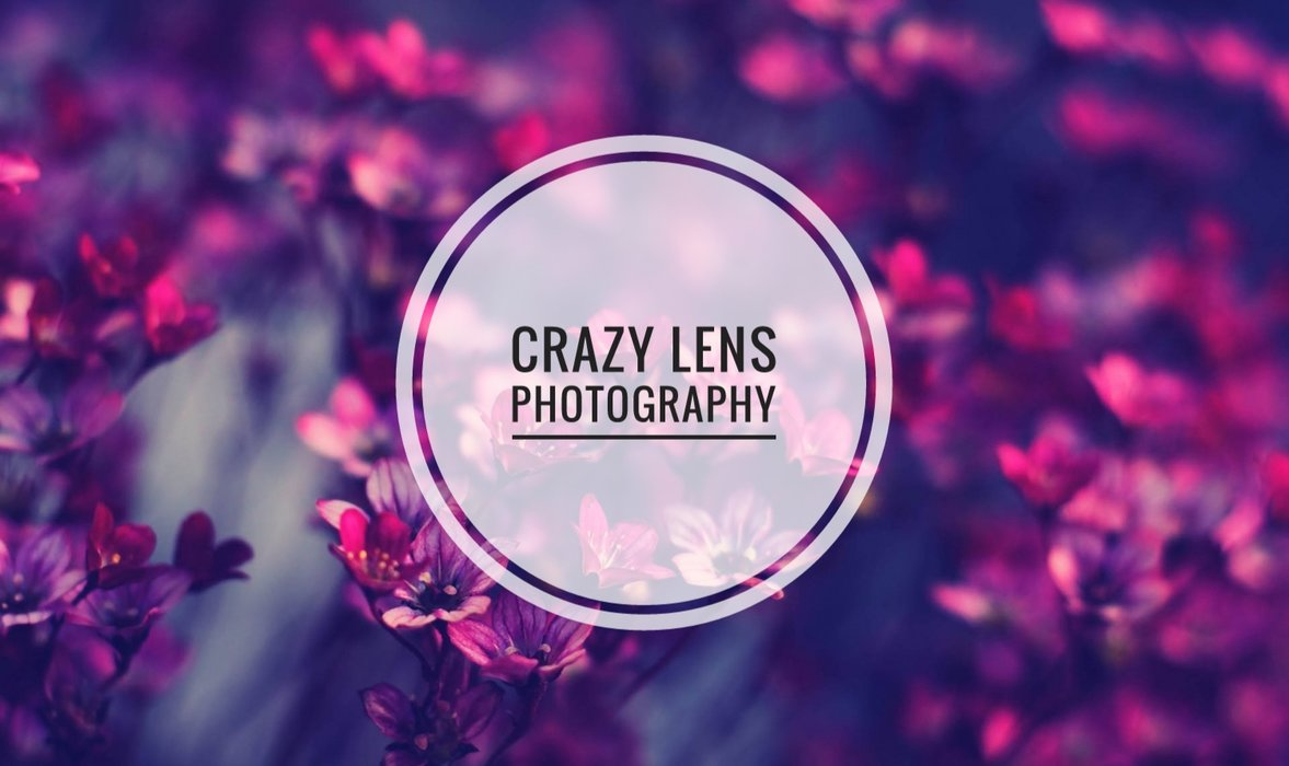 Crazy Lens Photography