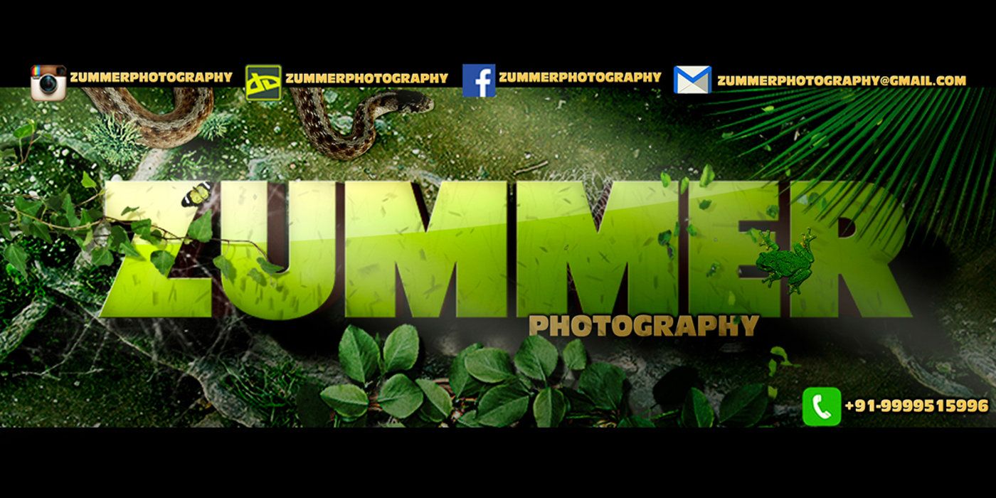 Zummer Photography