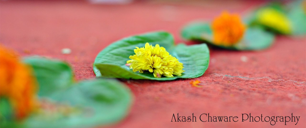Akash Chaware Photography